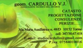 consulenza Geometra Torino Cardullo