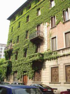 geometra Cardullo Torino